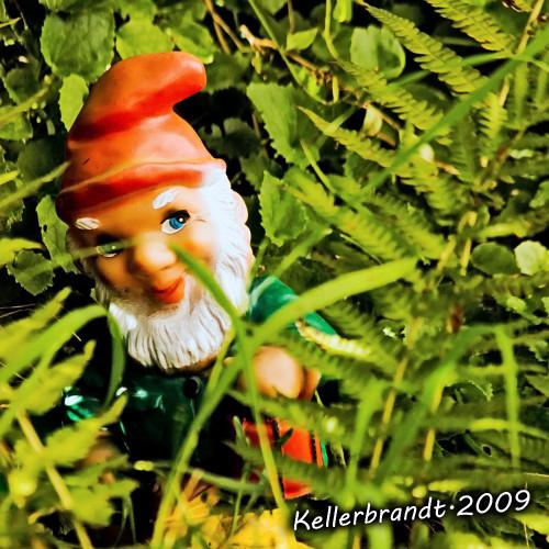 Gartenzwerg, halb hinter Gras versteckt