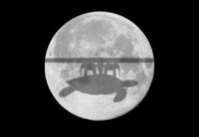 Scherzbild: Große Aufnahme des Mondes. Aus aktuellem Anlass: Bei einer Mondfinsternis, die Erde steht zwischen Sonne und Mond. Auf dem hell erleuchteten Mond erkennt man den Schatten einer Scheibe, getragen von Elefanten, die auf dem Rücken einer Schildkröte stehen (vgl. bei Terry Pratchet)
