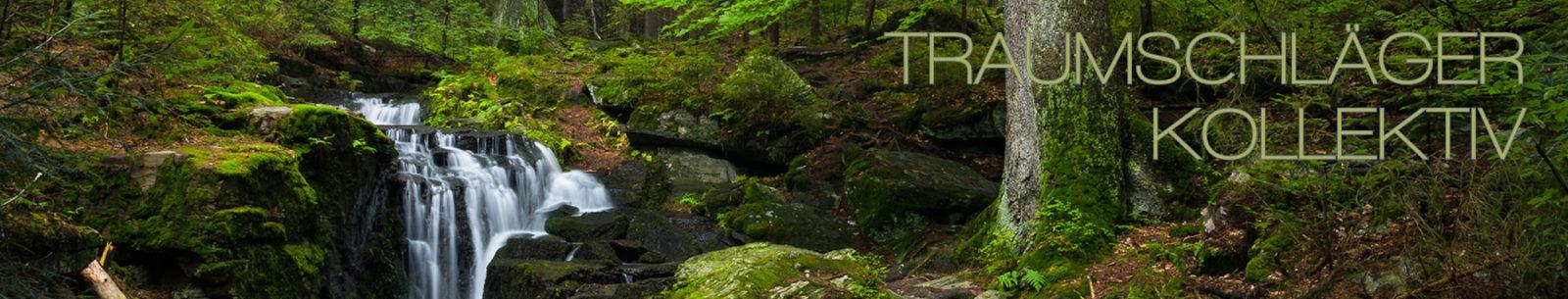 Naturaufnahme im Wald. Im Vordergrund reisigbedeckter Boden und mossbewachsene Steine, dahinter der Stamm eines wohl großen Baumes, er hat unten keine Äste. Links daneben fällt ein kleiner Bach über ein einige Steine herab und bildet einen malerischen kleinen Wasserfall. Durch Langzeitbelichtung ist die Gischt des Wasserfalls eingefangen und der Weg des Wassers die Steine hinab zu sehen. Um die zentrale Gruppe Wasserfall - Steine - Baumstamm herum breitet sich dichter Laubwald aus. Es scheint Frühling zu sein, das Grün wirkt frisch und jung. Im sehr naturbelassenen Wald ist sonst nichts spezifisches auszumachen, weder Wege noch Schilder oder Menschen, nur unterschiedlich große Bäume und Unterholz.