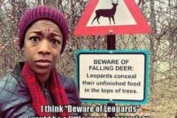 "Ausgefallenes Warnschild: ""Beware of falling deer: Leopards conceal their unfinished doof in the tops of trees"", und dazu der Kommentar: ""I think, 'Beware of Leopards' would be a little more appropriate"""