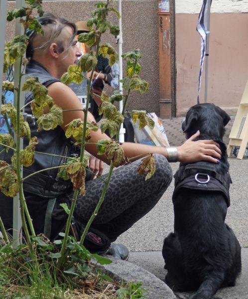 ein junger Mann mit Punk-Frisur sitzt auf dem Bordstein und streichelt mit der rechten Hand einen schwarzen Hund, der mit dem Rücken zum Betrachter neben ihm sitzt