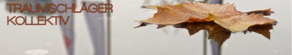 Gelbes Blatt eines Ahorn-Baums, schwimmt auf einer Wasserfläche. Das Wasser ist vollkommen still und glatt, dass das Blatt schwimmt, ist erst auf den zweiten Blick zu erkennen. In der Wasserfläche spiegeln sich Gebäude, Bäume und mehrere Fahnenmasten.