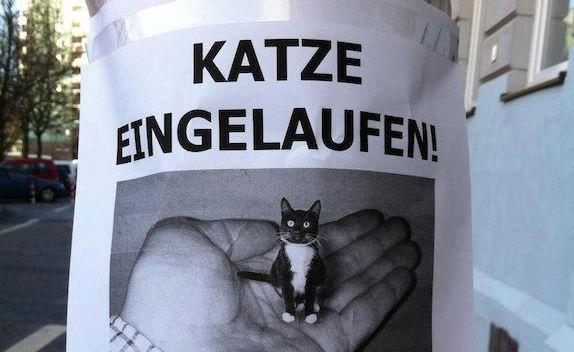 """Scherzbild: Hausgemachter Aushang an einem Laternenpfahl. Bild zeigt eine schwarz-weiße Katze in einer Männerhand - offenbar lediglich so groß wie der Daumen der Hand. Überschrift: """"Katze eingelaufen!"""""""