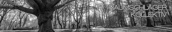 Schwarz-Weiß-HDR-Foto von einem Park. Beherrscht von einem großen Baum links vorne, durch die kahlen Äste blitzt die Sonne ins Objektiv.