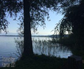Gegenlichtaufnahme am Ufer eines Sees. Im Vordergrund als Silhoutte ein Baum, Gräser und Schilf, dahinter spiegelt der See das Licht des Himmels und im Hintergrund sieht man das andere Ufer und im Dunst der Ferne höhere Berge